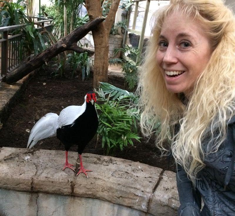 Bird Kingdom in NiagaraFalls